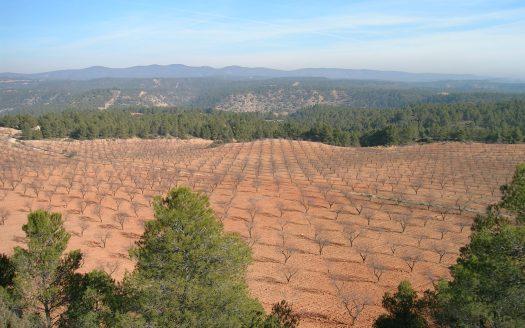 Finca rustica en Cuenca