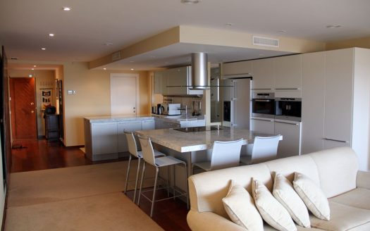 Fabulous apartment in Campomanes