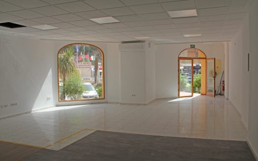 For sale commercial property in Campomanes